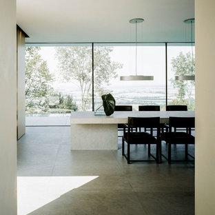 Idee per un'ampia sala da pranzo minimalista chiusa con pareti bianche, pavimento in cemento, stufa a legna, cornice del camino in metallo e pavimento grigio
