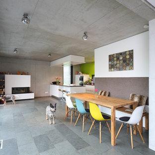 Esempio di una grande sala da pranzo aperta verso il soggiorno minimal con stufa a legna, cornice del camino in intonaco, pavimento grigio e pareti bianche