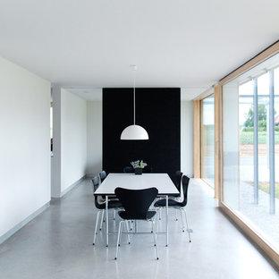 Offenes, Großes Modernes Esszimmer mit bunten Wänden und Betonboden in Stuttgart