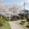 Houzzツアー: 満開の桜を取り込む住まい「隅切りの家」