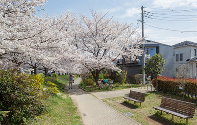 4 Japanese Homes Proudly Speak to Their Surroundings