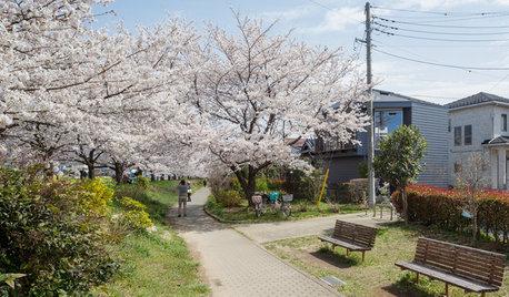 Casas japonesas: 4 viviendas que se funden con el entorno