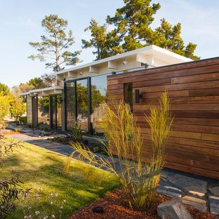 Imagen de fachada de casa marrón, contemporánea, de tamaño medio, de una planta, con revestimiento de madera y tejado plano