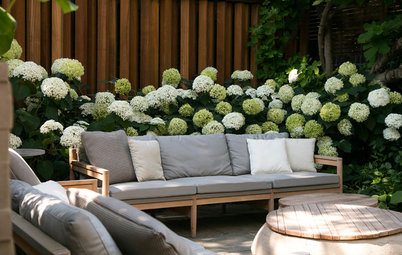 London Courtyard Blooms With Year-Round Color