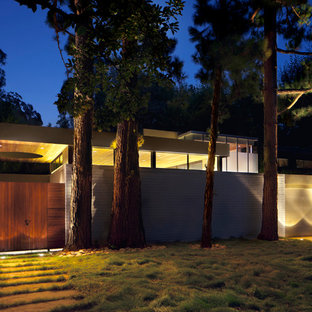 Design ideas for a midcentury concrete house exterior in Los Angeles.