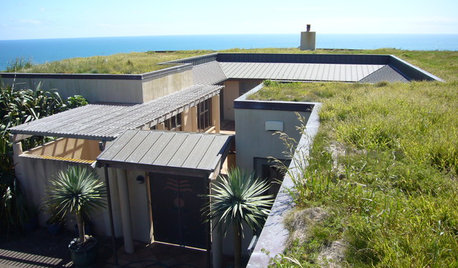 Living Roofs Put Down Roots