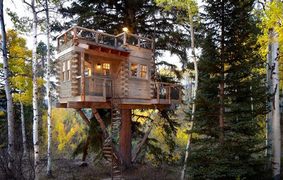 Houzz Call: Show Us Your Well-Designed Treehouse or Tree Fort!