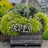 Tricks of the Trade: How to Save Money on Garden Soil