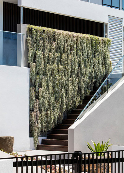 Contemporary Exterior by Aboda Design Group