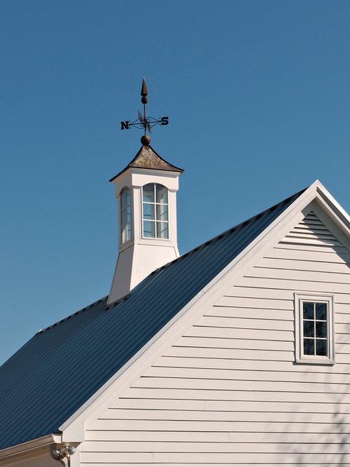 Cupola houzz for Houses with cupolas