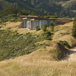 Idee per la facciata di una casa contemporanea con rivestimento in legno