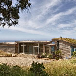 Inredning av ett modernt trähus, med levande tak
