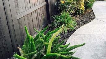 Decks, Fences, & Outdoor Spaces