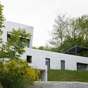 Immagine della facciata di una casa moderna a due piani con rivestimento in cemento e tetto piano