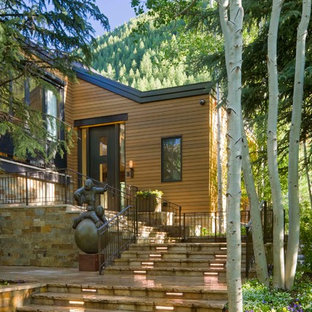 Transitional wood exterior home idea in Denver