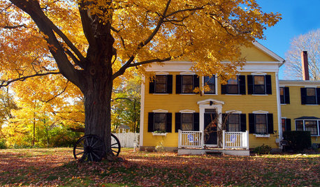 To-Dos: Your October Home Checklist
