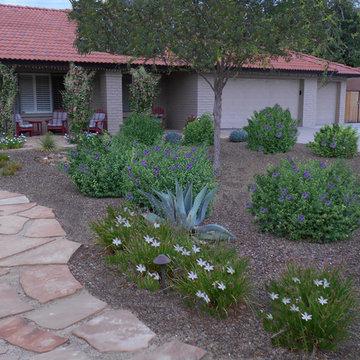 Front Flagstone Walkway & Desert Planting