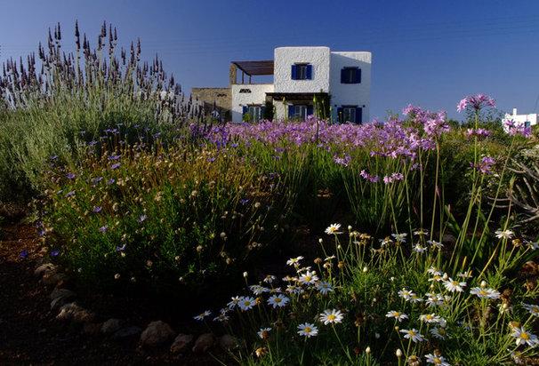 Mediterranean Exterior by Carolyn Chadwick