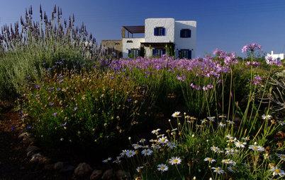 Higher Ground: 6 Spectacular Landscapes
