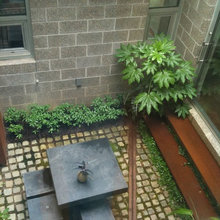 Private courtyard New Orleans style
