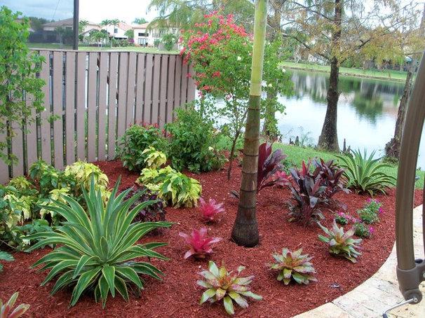 Tropical Exterior by The Green Man Garden & Landscape