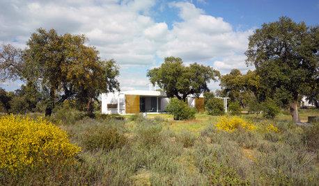 Arquitectura: Disfrutar de las encinas y la puesta del sol