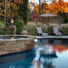 Traditional Exterior by Pool by Design