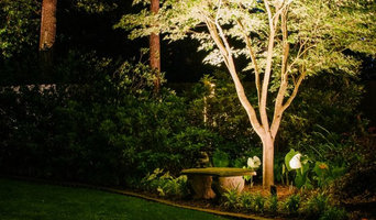 Indianapolis Landscape Lighting - Tree Lighting