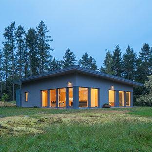 Idéer för att renovera ett mellanstort funkis brunt hus, med allt i ett plan, platt tak och levande tak