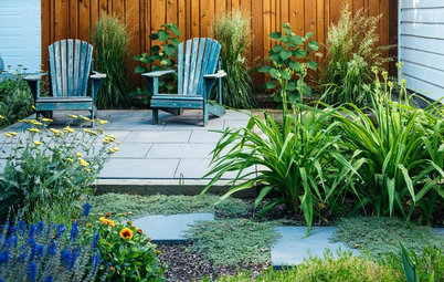Going on Vacation? How to Ensure Your Garden Survives