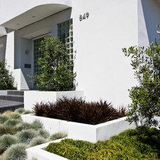 Modern Exterior by Bella Vita Garden Design