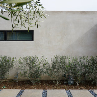 linear window at smooth stucco