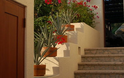 Houzz Escape: Down Old Mexico Way