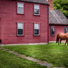 Houzz Tour: 1680s Saltbox Is Refreshed for a Young Family