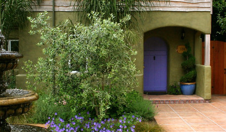 Colors and Plants That Go Best With a Bright Front Door