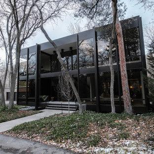 Diseño de fachada negra, contemporánea, grande, de dos plantas, con revestimiento de vidrio y tejado plano