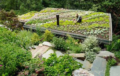 Arquitectura sostenible: Diseñar respetando el medio ambiente