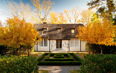 Houzz Call: Show Us Your Favorite Fall Tree