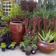 Eclectic Exterior by Daniel Nolan for Flora Grubb Gardens
