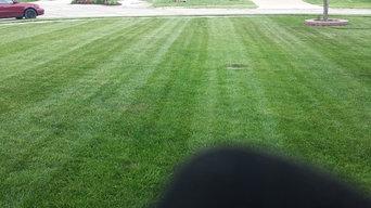 One stripped yard.