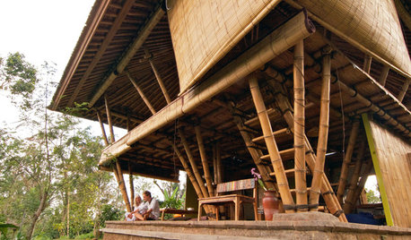Why Bamboo Is Emerging as One of the Preferred Building Materials