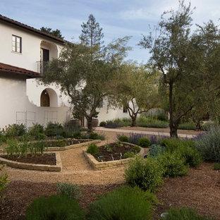 Palo Alto Mediterranean