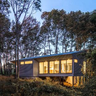 Imagen de fachada de casa gris, contemporánea, pequeña, de una planta, con revestimiento de metal, tejado de un solo tendido y tejado de metal