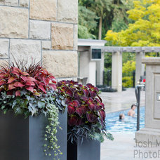 Mediterranean Exterior by Pot Incorporated