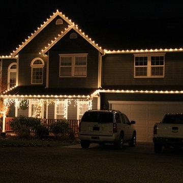 Professional Christmas Light Installation