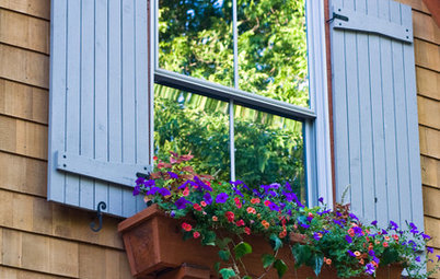 How to Make a Window Garden Grow