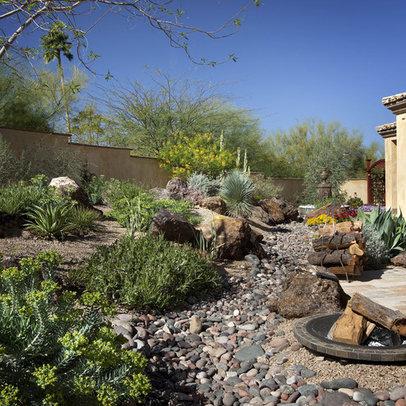 lush desert landscape home design ideas pictures remodel