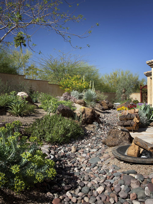Backyard desert landscaping houzz for Desert landscape