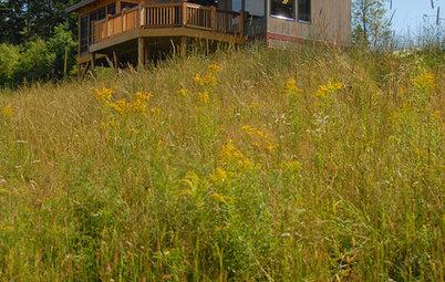 My Houzz: Hillside Sanctuary in Vermont
