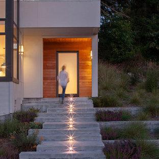 サンフランシスコのコンテンポラリースタイルのおしゃれな家の外観 (コンクリート繊維板サイディング、グレーの外壁、片流れ屋根、戸建、板屋根) の写真